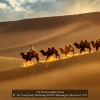 AAAAu-Yeong-Tony-Chi-Keung-000000-Marching-In-The-Desert-2020_2020WLC