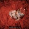 AAAberetta-lella-015219-red-wad-2020_2020WLC