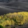 Cavalleri-Pierangelo-38958-TOSCANA2-2018_2019WLC
