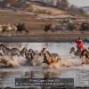 Li-Yat-Sang-000000-DRIVE-HORSES-3-2018_2019WLC