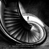 CHAN-H.W.-03441676-Stair-Step-M5-2018_2019WLC
