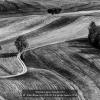Pelle-Francesco-004241-La-strada-bianca-2018_2019WLC