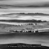 TOMELLERI-Giuseppe-008082-Fog-on-the-hills-nr-2-2019_2019WLC