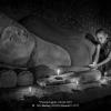 Wu-Huifang-000000-Burma10-2017_2019WLC