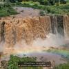 Demeter-János-000000-Nile-falls-2019_2019WLC