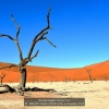 SIMON-Claude-000000-May-in-Deadvlei-2018_2019WLC