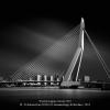 D-Aubioul-Jan-00561611-Erasmusbrige-Rotterdam-2018_2019WLC