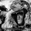 Ingino-Alfredo-043100-Sardinian-carnival-mask-3-2019_2019WLC
