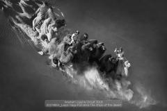 sito00378B01_Lajos-Nagy-Romania-The-ships-of-the-desertCLP