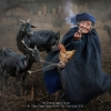 AAAChan-Ching-Ching-000000-The-Goat-Lady-2020_2020WLC