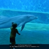 AAAFULCHERI-RAIMONDO-030774-CAREZZA-2020_2020WLC