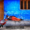 AAAPal-Udayan-Sankar-000000-REPOSE-2019_2020WLC