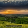 AAAScoca-Domenico-043616-Al-calar-del-sole-2020_2020WLC