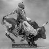 AAAChan-Betty-000000-Bull-Rider-Blue-2020_2020WLC