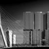 AAAD-Alia-Valentina-054470-Erasmusbrug-2020_2020WLC