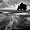 AAAFratini-Franco-043618-Sea-monster-4-2020_2020WLC