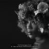AAAStake-Jan-Thomas-000000-Flowers-9387-2017_2020WLC