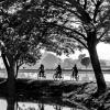 AAAWidodo-Sugiarto-000000-THREE-BICYCLES-2020_2020WLC