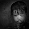 AAAcardonati-luciano-19758-piccolo-birmano-2020_2020WLC