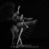 Palermo-Claudio-048670-The-last-dance-move-2019_2019WLC