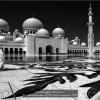 cardonati-luciano-19758-verso-la-moschea-2019_2019WLC