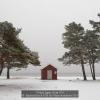 Espeland-Kari-E-0578.165-Winter-at-th-Beach-2019_2019WLC