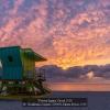 Kaufmann-Susanne-000000-Miami-Beach-2019_2019WLC