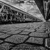 Moretti-Mario-Corrado-054460-Alla-Stazione-2018_2019WLC