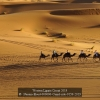 Nassim-Eloud-000000-Camel-ride-9159-2019_2019WLC