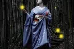 sito00042A03_Robin-Yong-Australia-Rebirth-of-the-FirefliesCLP