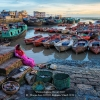 Wenjie-Luo-000000-Fishman-Wharf-2019_2019WLC