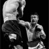 Meoli-Martina-050270-Boxer-2019_2019WLC